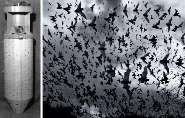 bomba de murciélagos